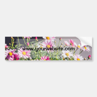 Pink Daisies On A Sunny Day Bumper Sticker