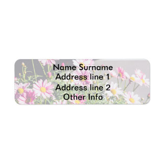 Pink Daisies On A Sunny Day Return Address Label