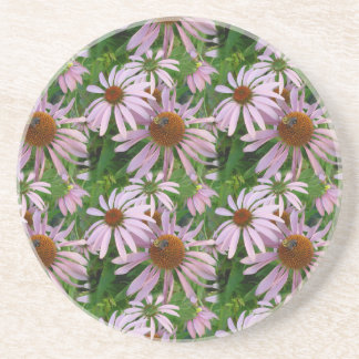 Pink Daisies with a Bee Coaster