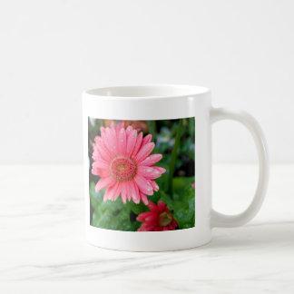 Pink Daisy after rain Basic White Mug