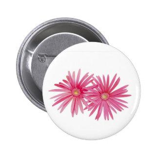 Pink daisy flower button