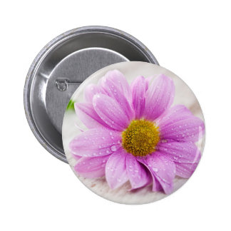 Pink daisy flower gift 6 cm round badge