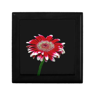 pink daisy small square gift box
