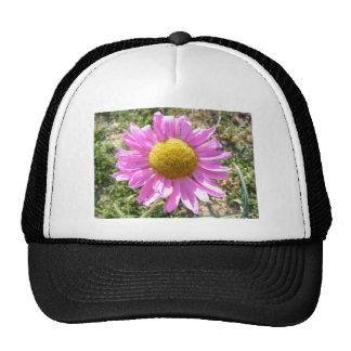 Pink Daisy Hat