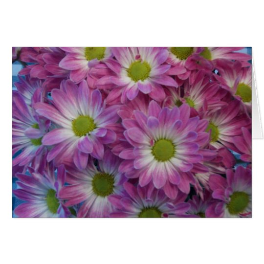 Pink Daisy Notecards Card