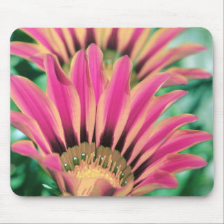 Pink Daisy Petals Mouse Mat