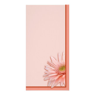 Pink Daisy Photo Card Template
