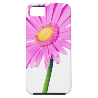 Pink Daisy Template - Customized iPhone 5 Covers