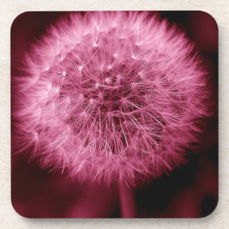Pink Dandelion Coaster
