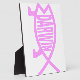 Pink Darwin Fish Plaque