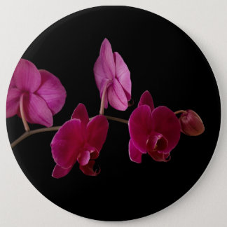 Pink Dendrobium Orchid - Customized Flowers 6 Cm Round Badge