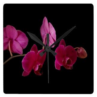 Pink Dendrobium Orchid - Customized Flowers Wallclock