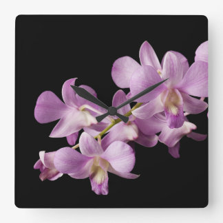 Pink Dendrobium Orchid Flower on Black - Orchids Square Wall Clock
