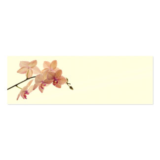 Pink Dendrobium Orchid Flower - Orchids Template Business Cards