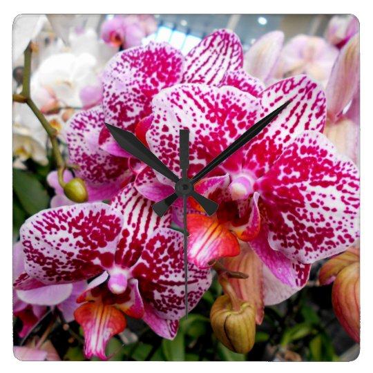 Pink Dendrobium Orchids Clocks