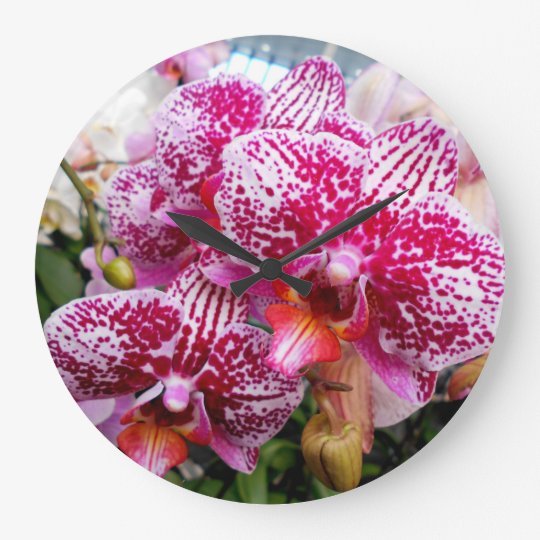 Pink Dendrobium Orchids Large Clock
