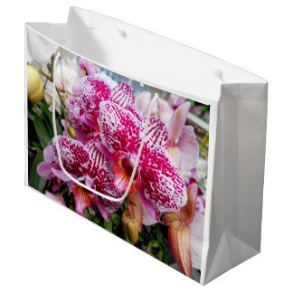 Pink Dendrobium Orchids Large Gift Bag