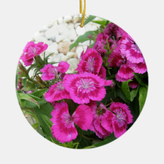 Pink Dianthus/Sweet William Christmas Ornament