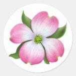 Pink Dogwood Flower Sticker