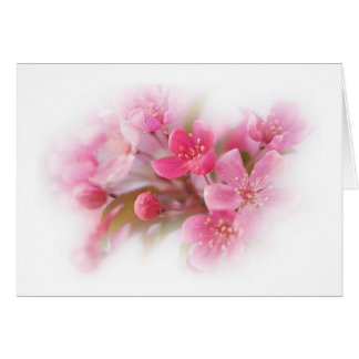 pink dogwood flowers card