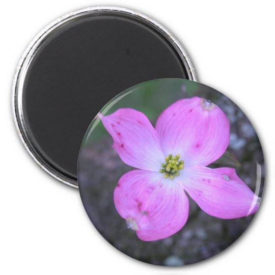Pink Dogwood Magnet
