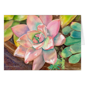Pink Echeveria greeting card by Debra Lee Baldwin