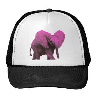 Pink Elephant Blue Eyes.png Cap
