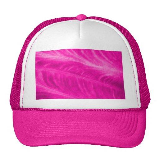 Pink Elephant Ear Close Up Mesh Hat