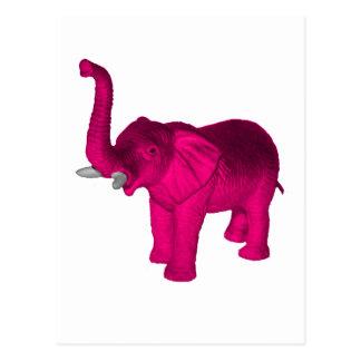 Pink Elephant(s) Postcard