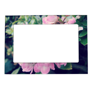 Pink Escallonia Floral Magnetic Frame