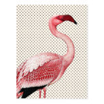 Pink Flamingo and Vintage Polka Dots