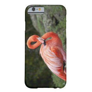 Pink Flamingo Barely There iPhone 6 Case