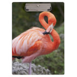 Pink Flamingo Clipboards