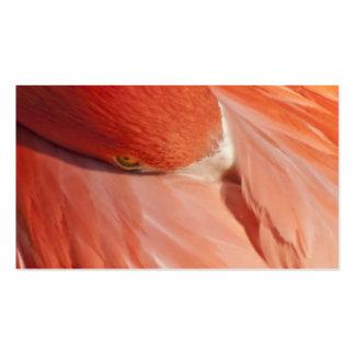 Pink Flamingo Closeup Business Card