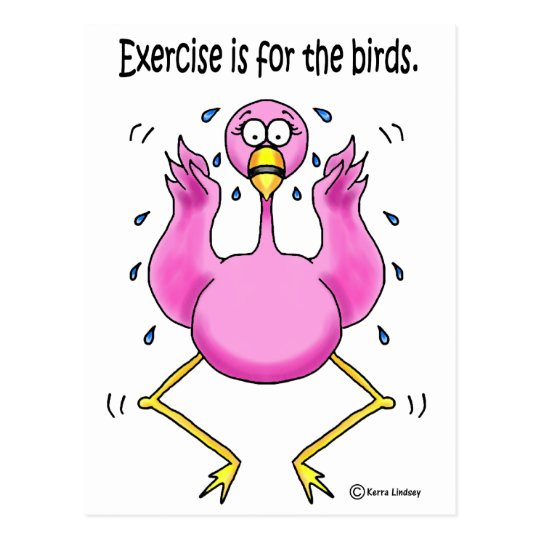 Pink Flamingo Funny Exercise is For the Birds Postcard