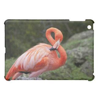 Pink Flamingo iPad Mini Cover
