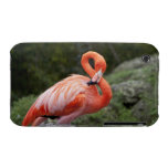 Pink Flamingo iPhone 3 Case