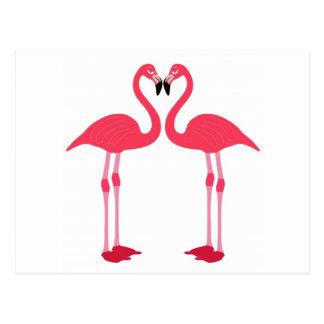 Pink Flamingo Love Birds Postcard