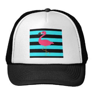 Pink Flamingo on Teal and Black Cap