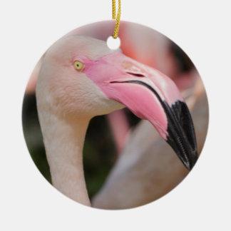 pink flamingo Phoenicopterus ruber roseus Christmas Ornament