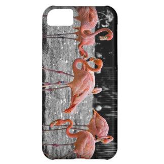 Pink Flamingo Phone Case iPhone 5C Cases