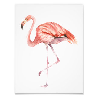 Pink Flamingo Photo Print