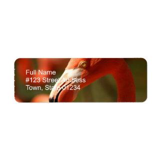 Pink Flamingo Return Address Label
