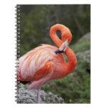 Pink Flamingo Spiral Note Book