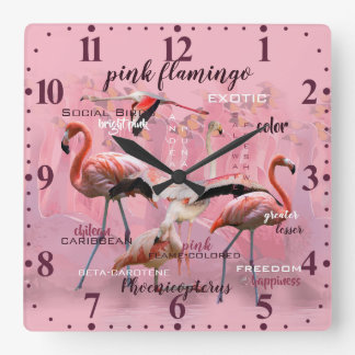 Pink Flamingo Typography | Customized Square Wall Clock