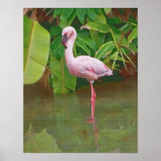 Pink Flamingo Wading Poster