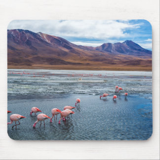Pink Flamingoes in Bolivia Mouse Mat