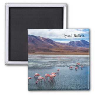 Pink Flamingoes in Bolivia Square Magnet