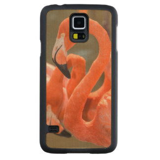 Pink Flamingos at Gatorland Carved Maple Galaxy S5 Case