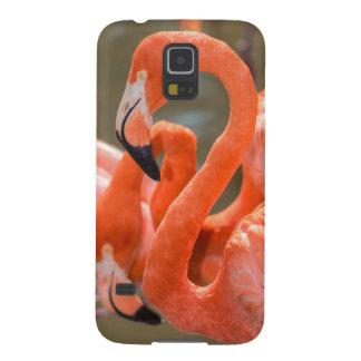 Pink Flamingos at Gatorland Galaxy S5 Cover